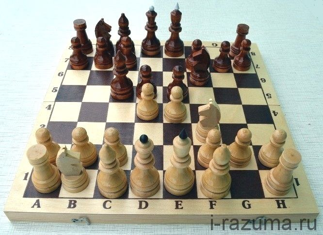 Шахматы Гроссмейстерские деревянные 42х42 См