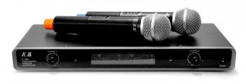 ICM IU-2081 Радиосистема 2 микрофона