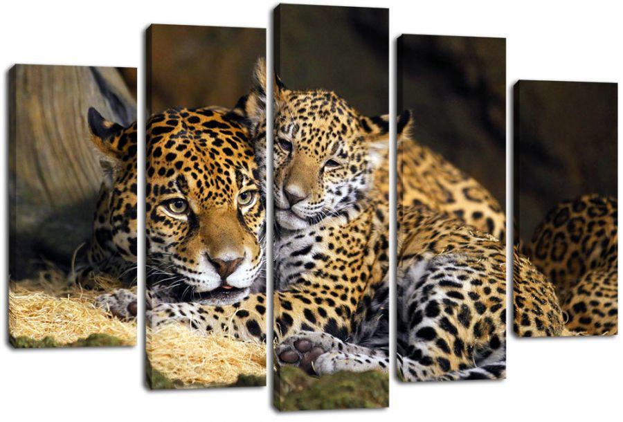 Модульная картина Леопарды