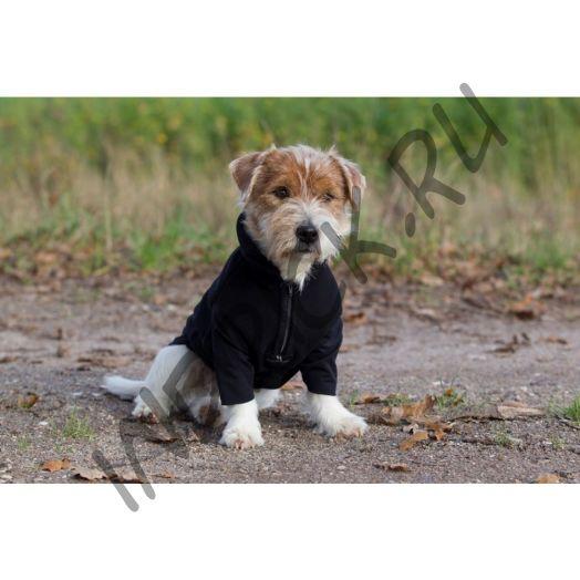 Флисовый свитер Back on Track для собак