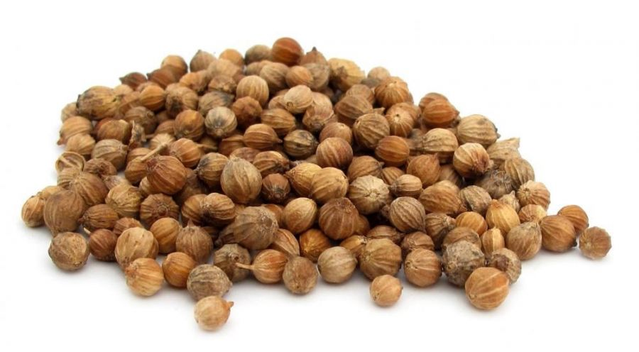 Кинза-Кориандр семена (кг)
