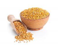 Горчица семя цельное (кг)
