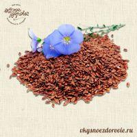 Лен коричневый (семена). 500гр.