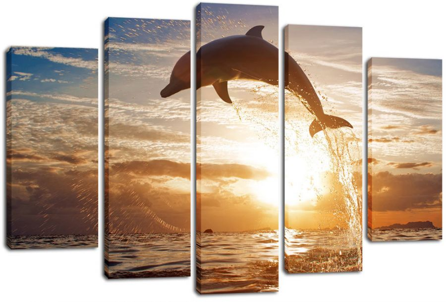 Модульная картина Дельфин в прыжке