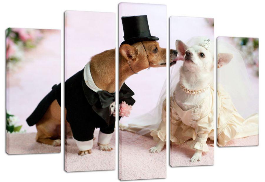 Модульная картина Собачья свадьба