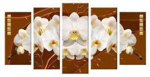 Цветение орхидей (размер М)