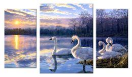 Лебединое озеро 2