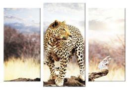 Молодой леопард 2