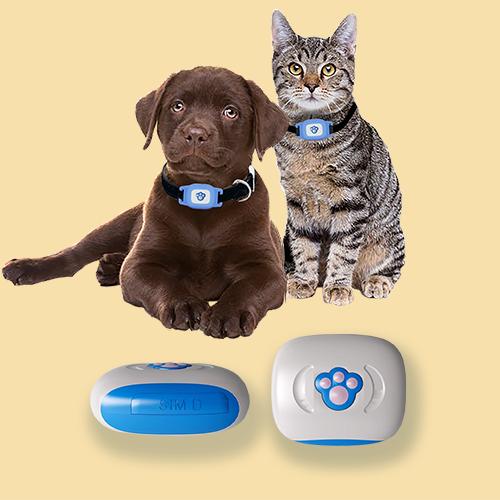 GPS Трекер - ошейник для животных