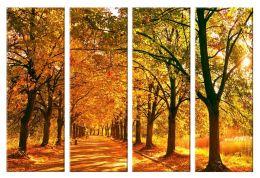 Осенняя аллея 2