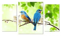 Синие птички