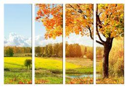 Солнечная осень 2