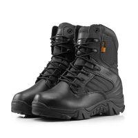 Зимние мужские ботинки Coroura