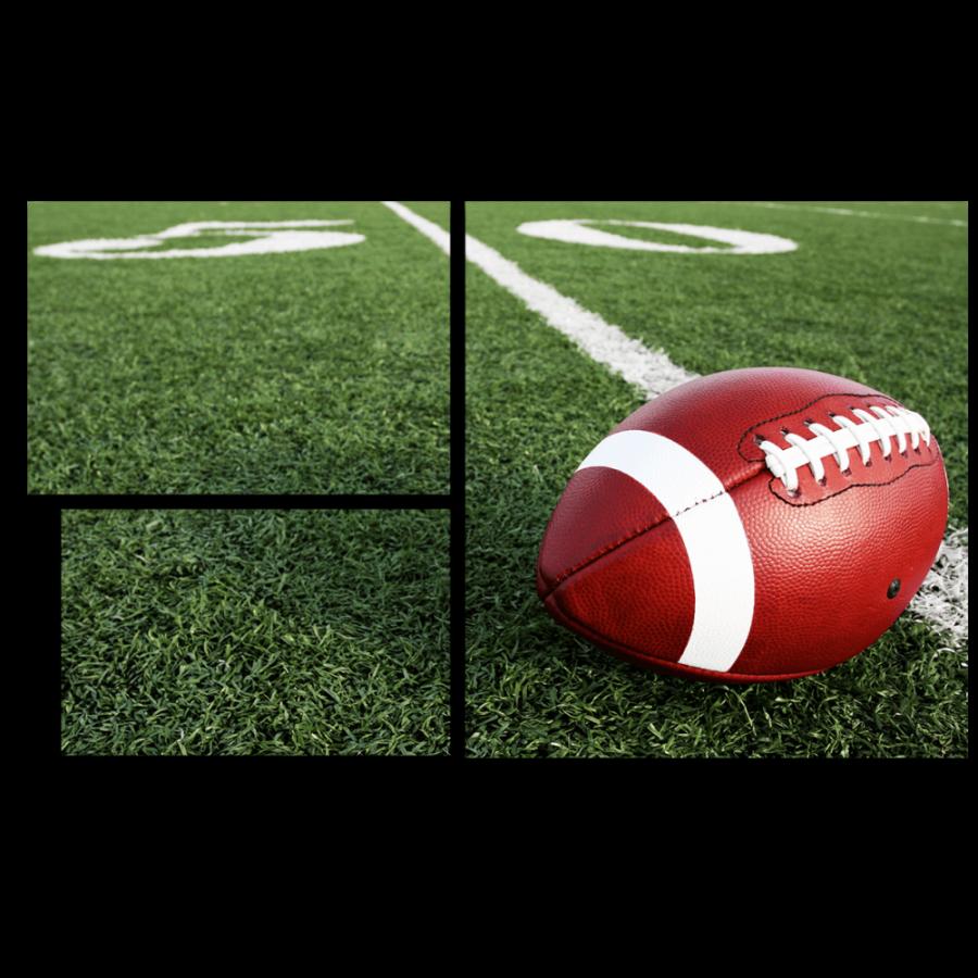 Модульная картина Мяч для американского футбола