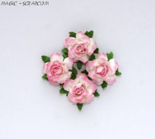 Розы кудрявые бело-розовые - 4 шт