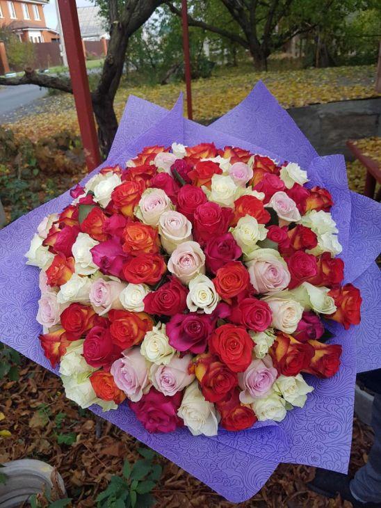 101 микс роза