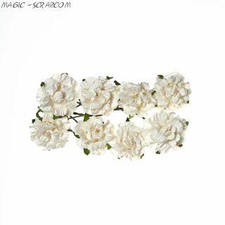 """Розы из бумаги белые """"Кудрявые"""" 8 шт"""