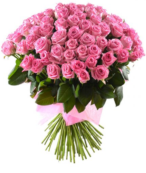 51 роза 50 см розовая
