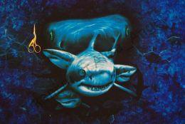 Акулы футер 2-х нитка