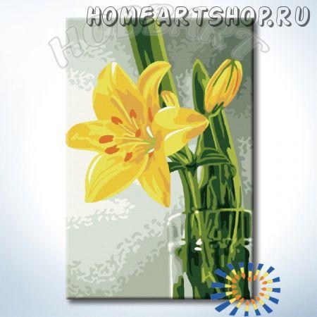 """Картина по номерам """"HOBBART Lite. Жёлтый букет"""" 20х30"""