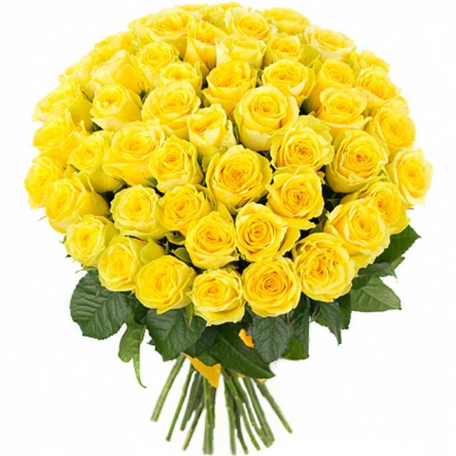 51 роза 50 см Желтое солнце