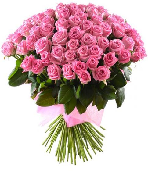 51 роза 60см
