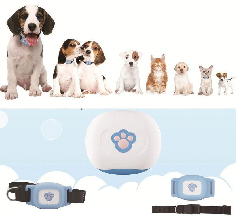 GPS трекер ошейник для животных