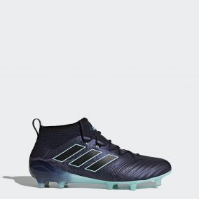 Бутсы ADIDAS ACE 17.1 FG BY2459