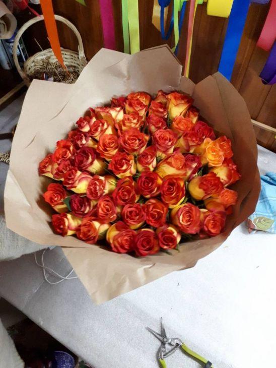 51 роза Двухцветная  50 см Импортная