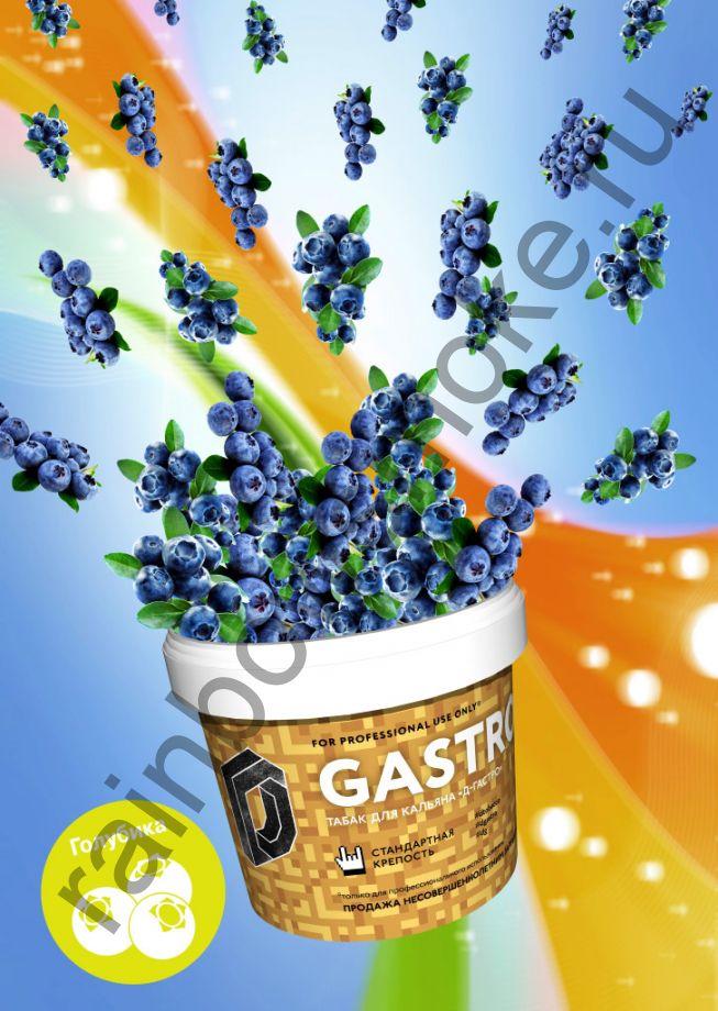 D-Gastro 500 гр - Голубика