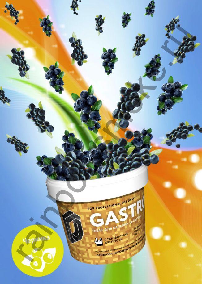 D-Gastro 500 гр - Черника