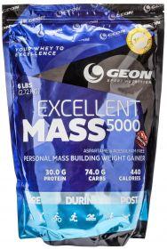 G.E.O.N. Excellent Mass (2720 гр.)