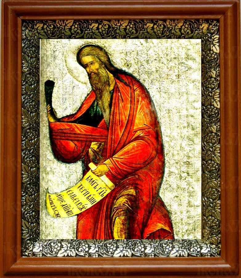 Самуил, пророк (19х22), светлый киот