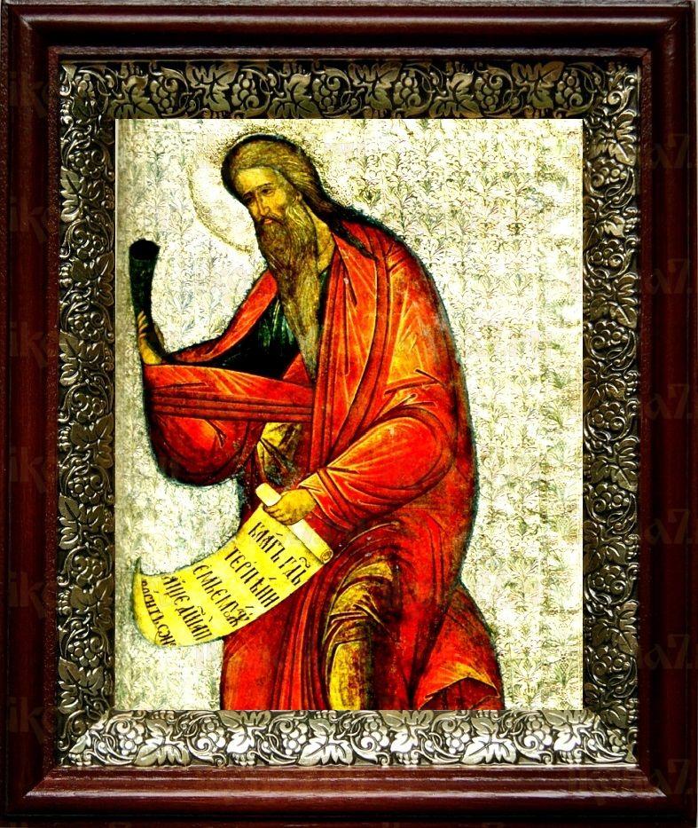 Самуил, пророк (19х22), темный киот