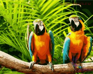 Картина по номерам Попугаи ара E684