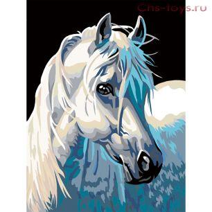 Картина по номерам Белый жеребец E051