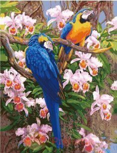 Картина по номерам Попугаи E308