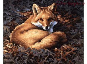 Картина по номерам Лисица E029