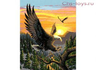 Картина по номерам Орел на закате E096