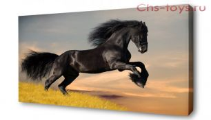 Картина по номерам Лошадь E296