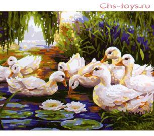Картина по номерам Утки на пруду E046