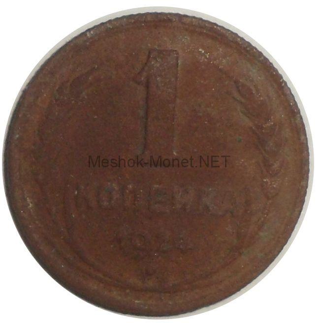 1 копейка 1924 года # 1