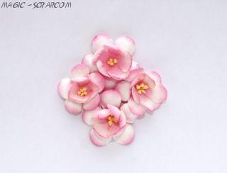 Цветы сакуры нежно розовые 4 см