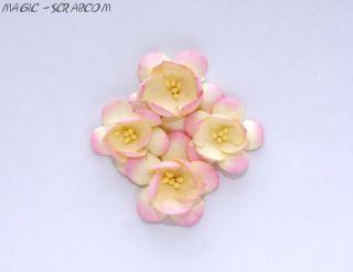Цветы сакуры бежево-розовые 4 см