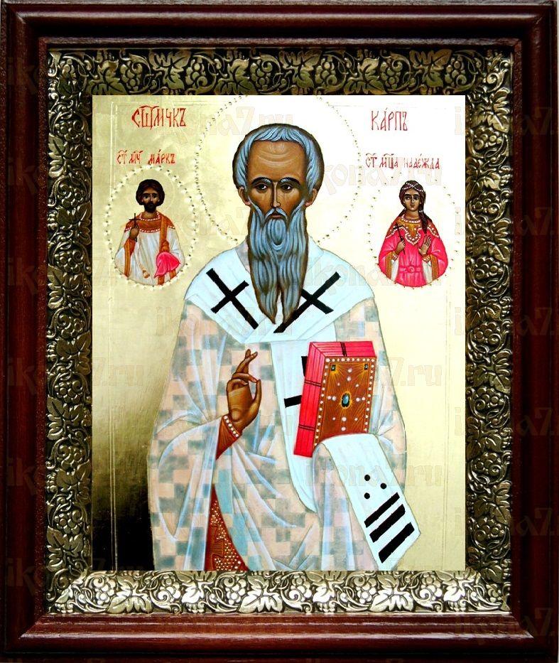 Карп, апостол от 70-ти (19х22), темный киот