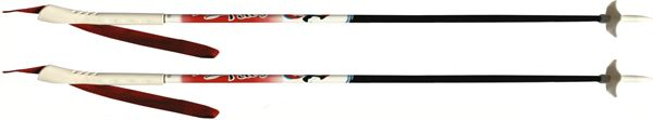 Палки лыжные (085)