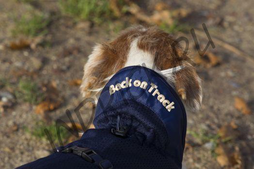 Сетчатая попона Back on Track Mesh Blue для собак