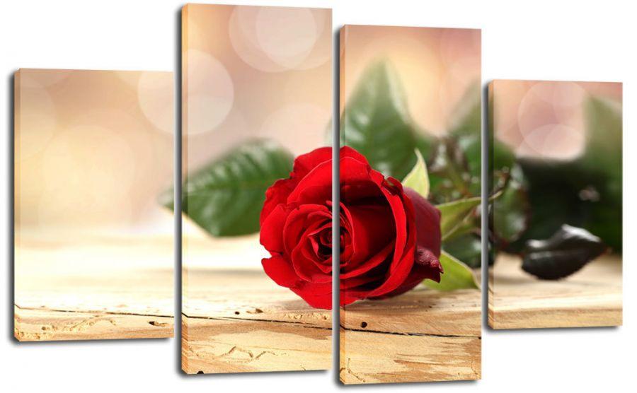 Модульная картина Одинокая роза