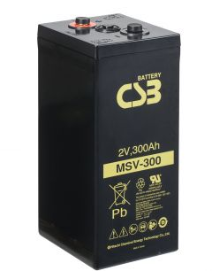 MSV 300