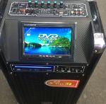Колонка на АКБ с DVD проигрывателем
